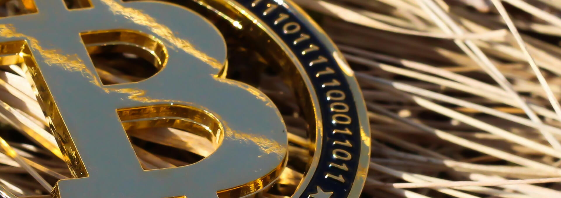 bitcoin btc bitek satoshi nakamoto coin