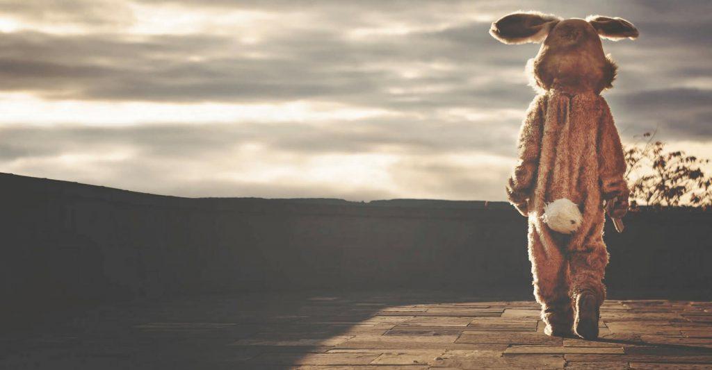 Nie o to chodzi, by złapać króliczka