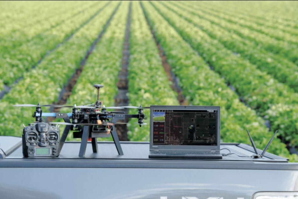 Wykorzystanie dronów do kontroli upraw