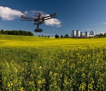 worldmaster-agro-wykorzystywanie-dronow-do-kontroli-upraw