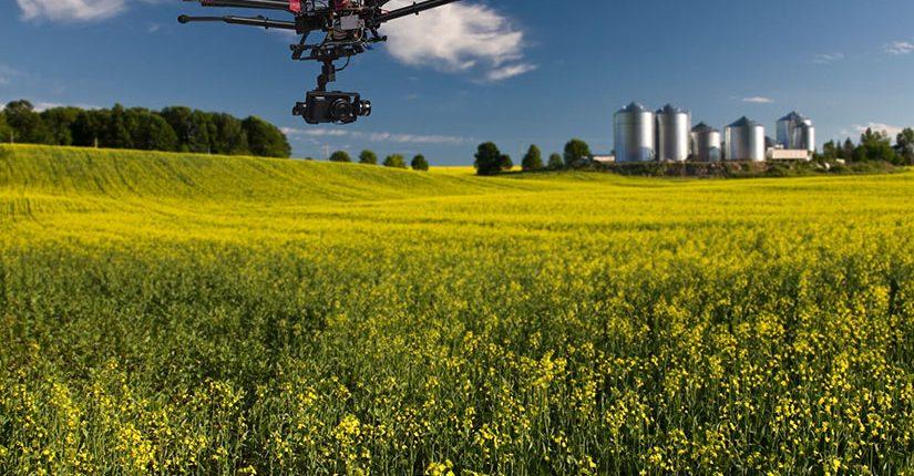 zdjęcie wpisu Wykorzystanie dronów do kontroli upraw