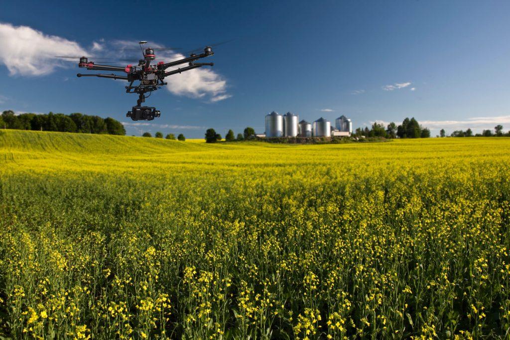 wykorzystywanie-dronow-do-kontroli-upraw