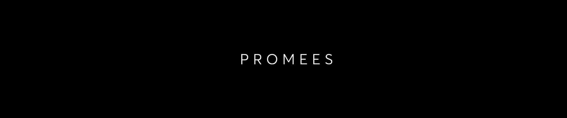 zdjęcie wyróżniające dla #promees WorldMaster