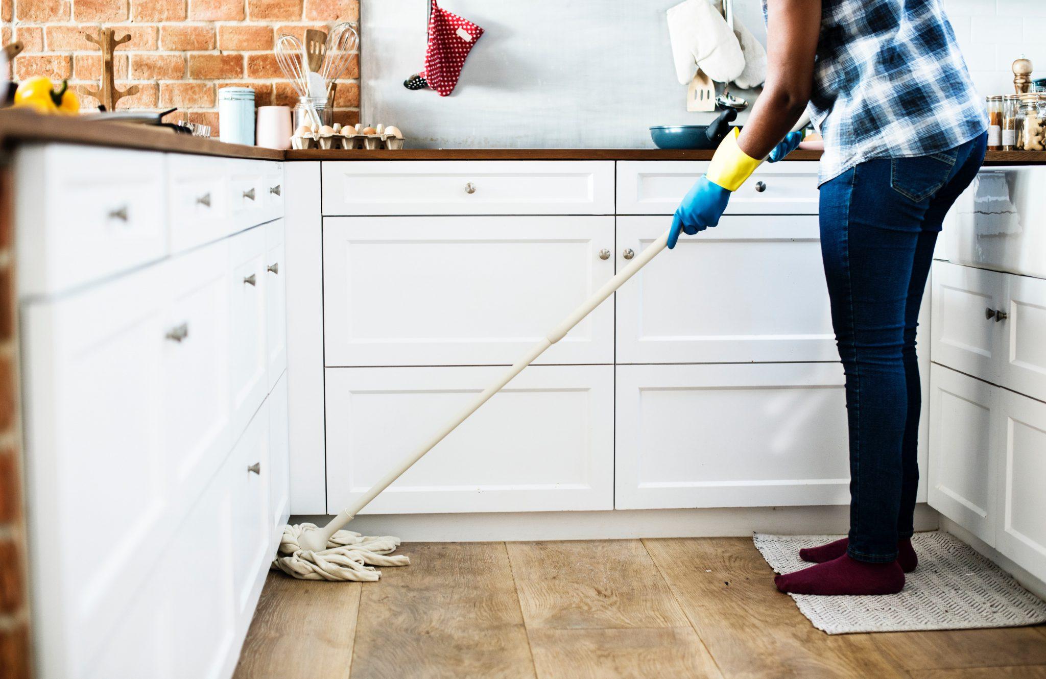 kura domowa, obowiązki domowe, prace domowe, jak odciągnąć się do prac domowych, jak odnaleźć sens życia, pasja