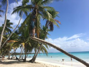 karaibskie przygody, sporo przygód,