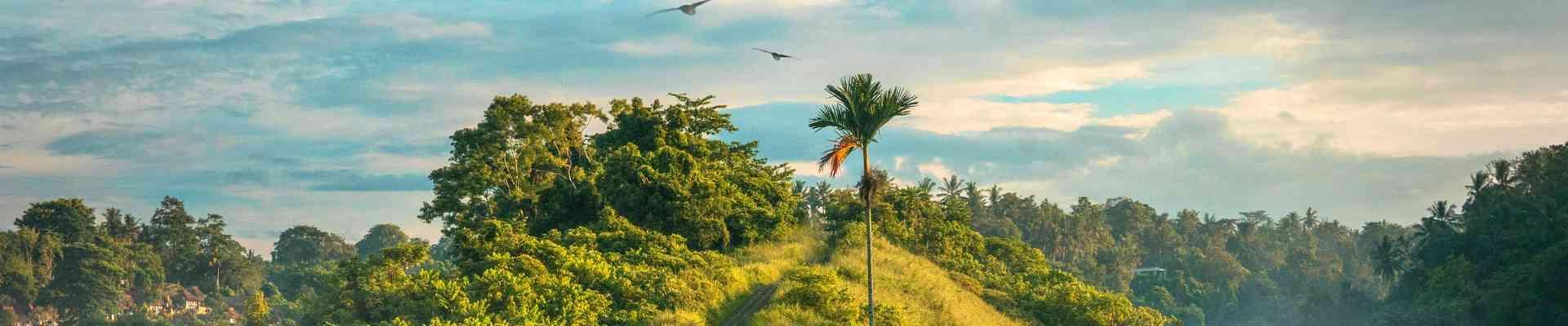 zdjęcie wyróżniające dla kategorii Podróże WorldMaster