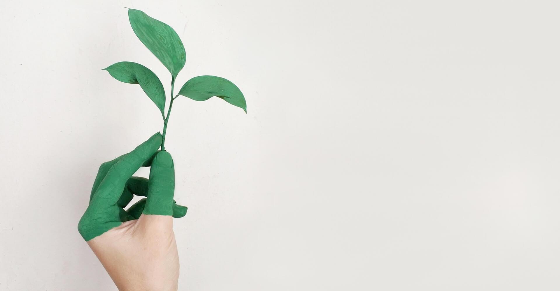 jak chronić środowisko?
